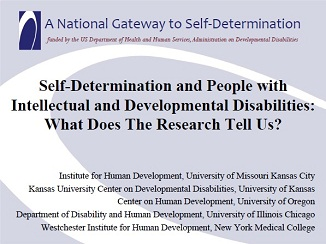 Cover of Self-Determination and People with Intellectual Disabilities: What does the Research Tell Us?