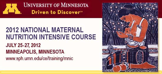 2012 National Maternal Nutrition Intensive Course