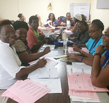Virgin Islands UCEDD Partners with Department of Human Services to Improve Early Childhood Outcomes