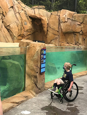 Access for All at the Cincinnati Zoo & Botanical Garden