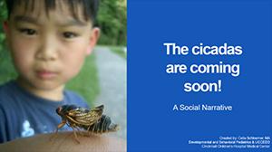 The Cicadas are Coming - Social Narrative